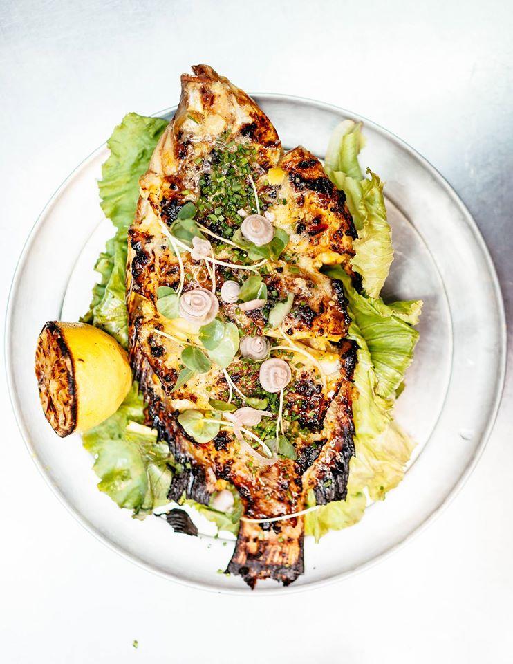 artichoke fish