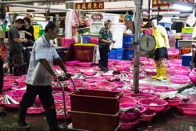 wholesale-food-factories-senoko-fishery-port