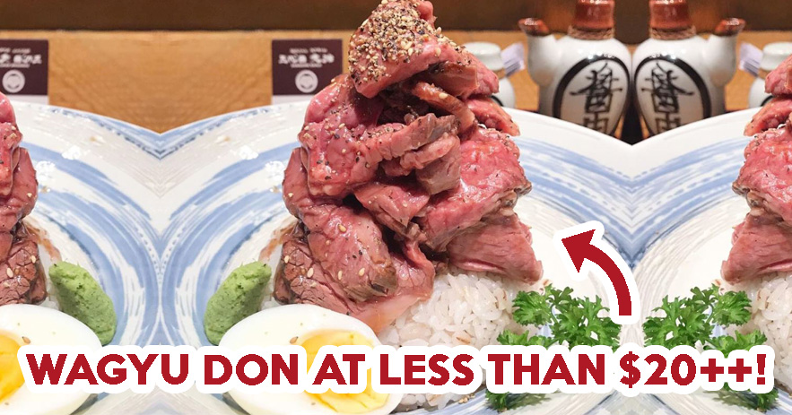 affordable beef donburi - feat