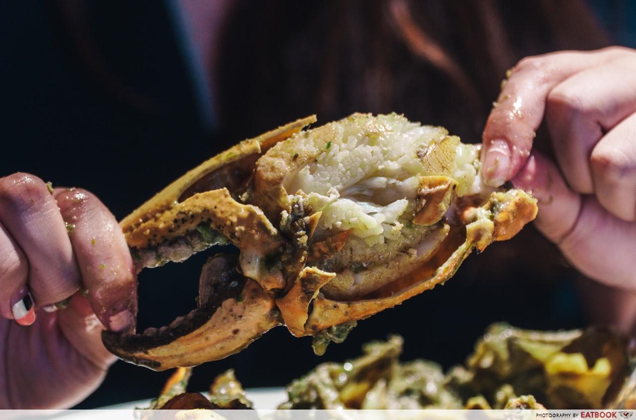 holycrab - crab claw