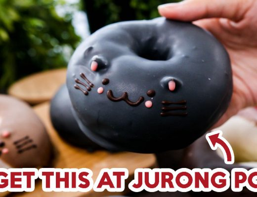 cat donuts - FEATURE