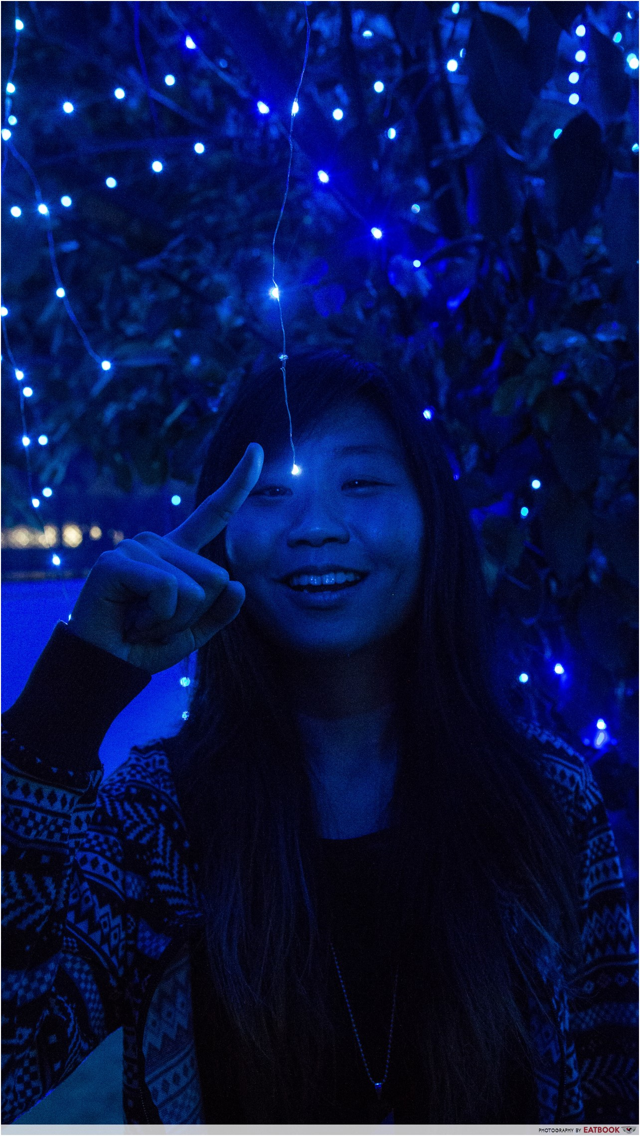 Blue Willow - me