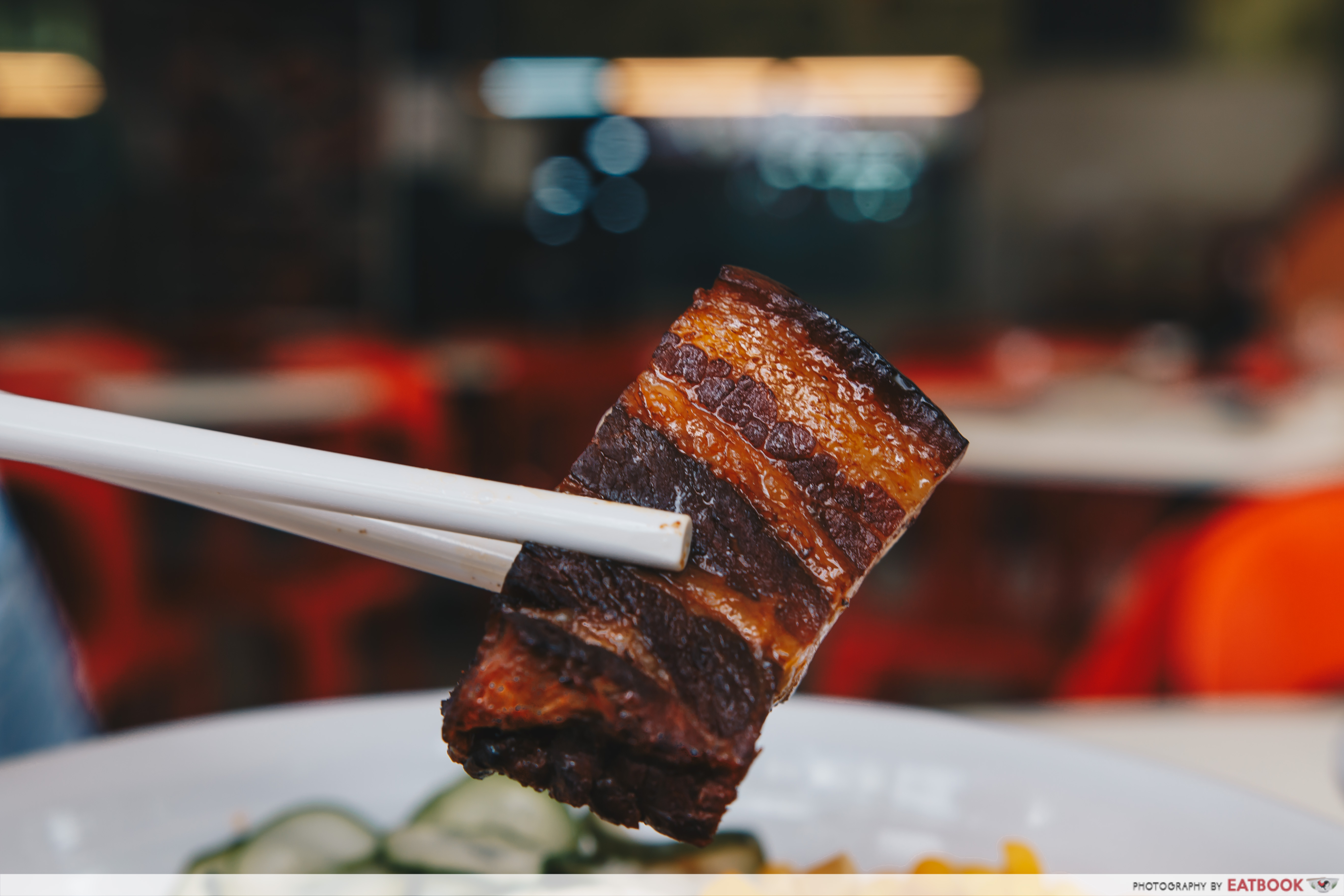 Sing HK Cafe - Braised Pork Close Up