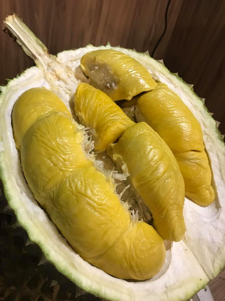Durian Stores Durianlicious