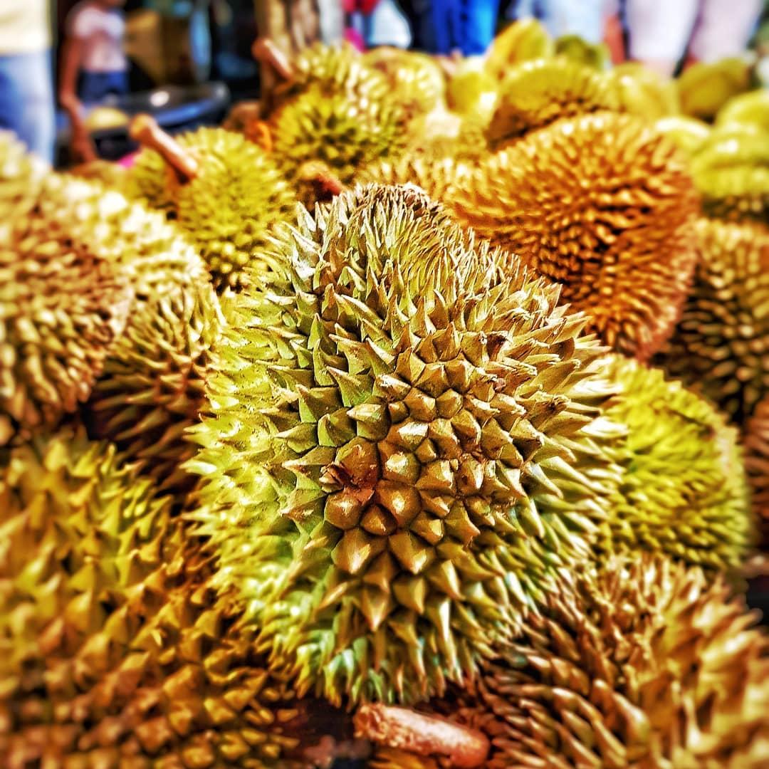 Free Durian Basket