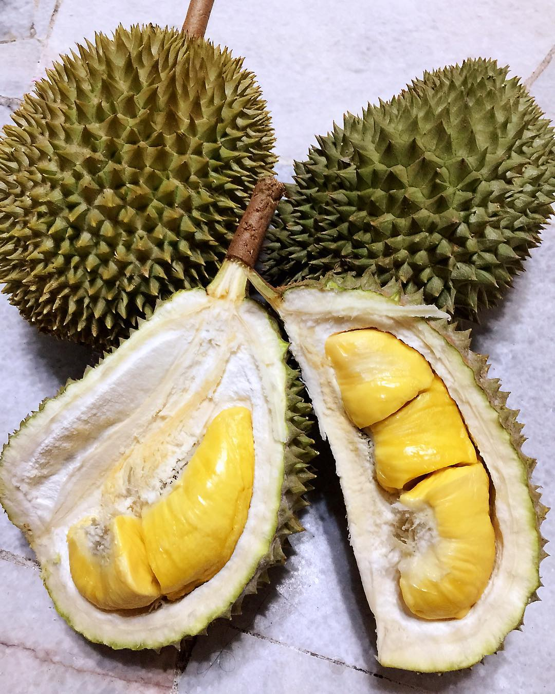 Free Durian opened