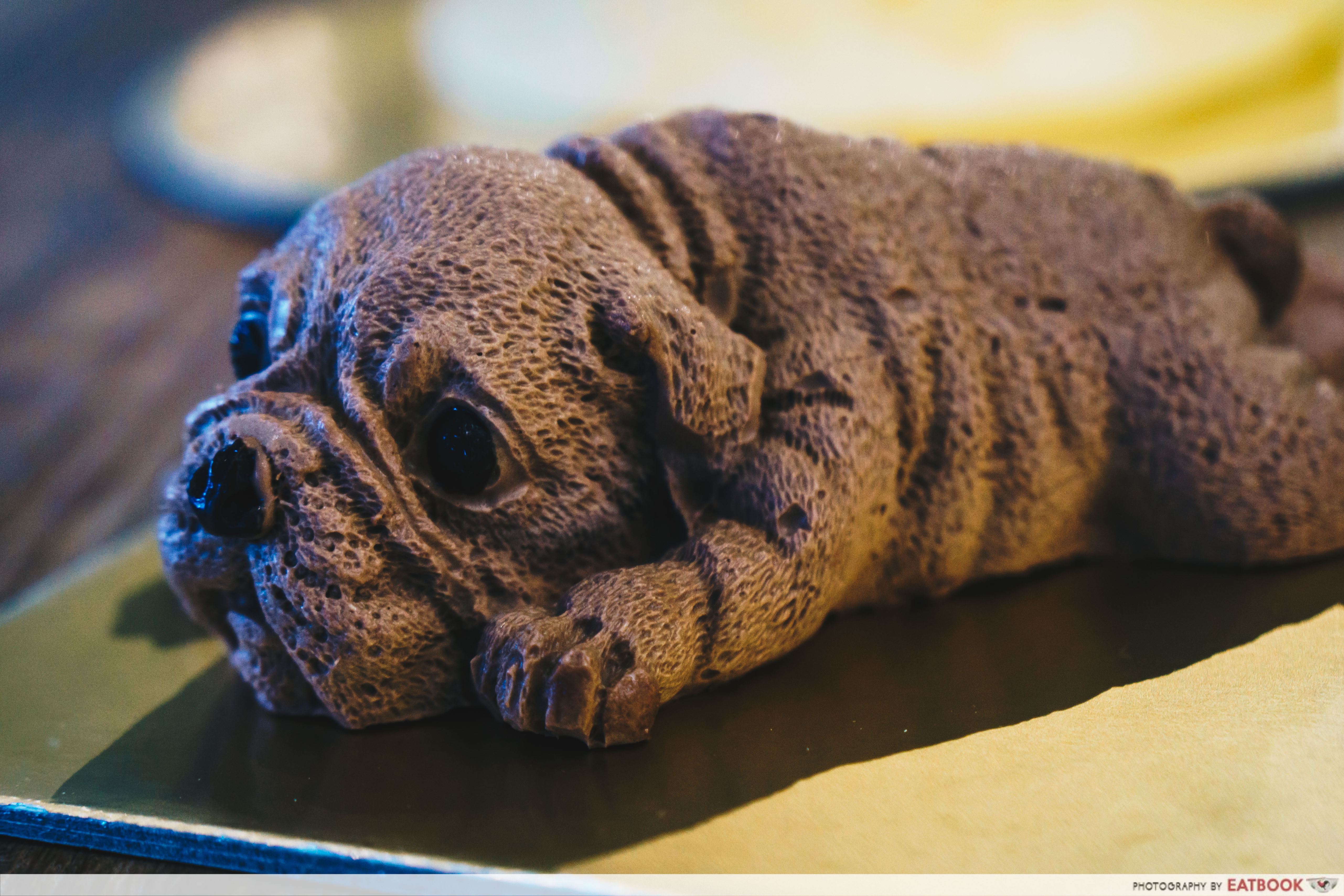 Dog Cake - Shar Pei Puppy Cake