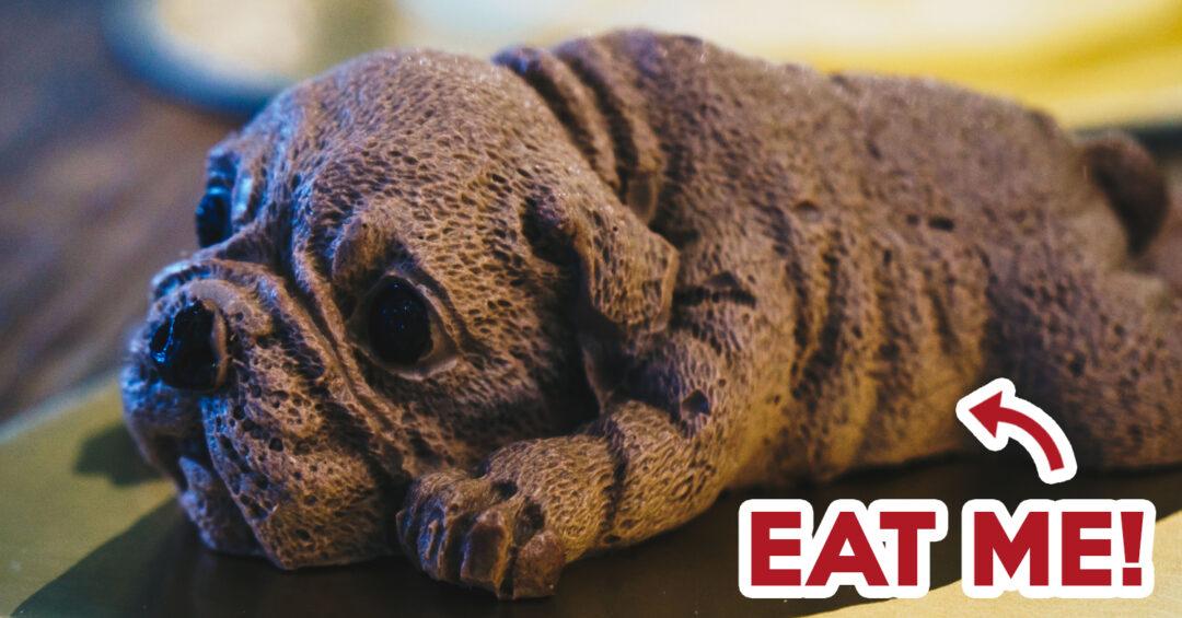Dog Cake - Feature Image