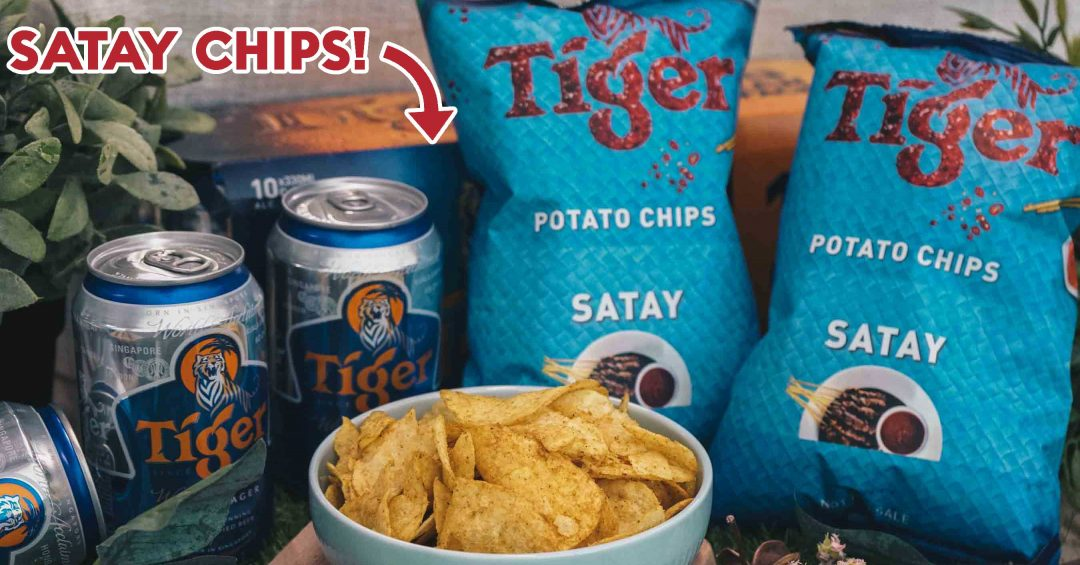 Satay Chips Cover 2