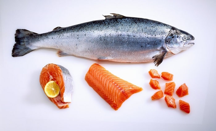 FREE salmon sashimi Sumo Bar Happy-min