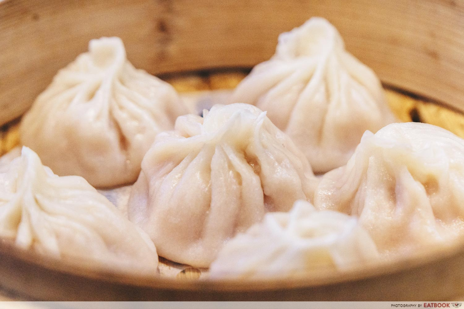 Hua Yi Kitchen - Xiao Long Bao Closeup
