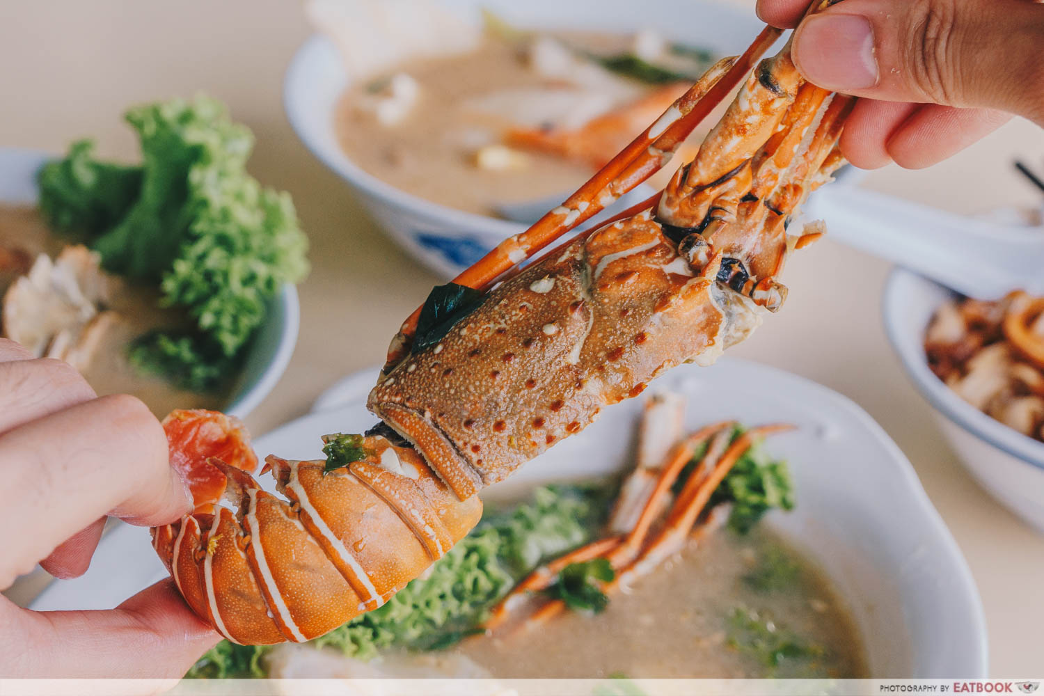 Shun Feng Crayfish Delight - Spiny Lobster Appearance