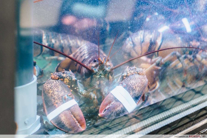 Burger & Lobster - Water Tank