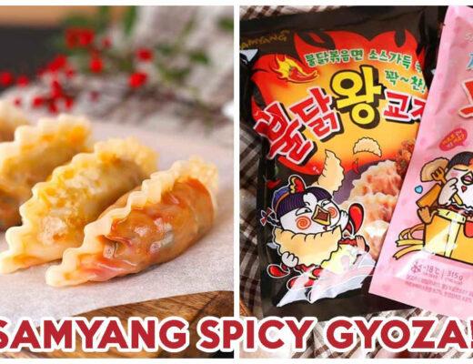 Samyang Gyoza - Gyoza Feature Image