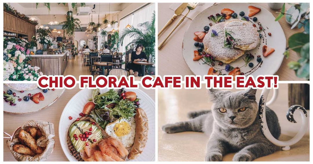 Cafe De Nicole's Flower - Feature Image
