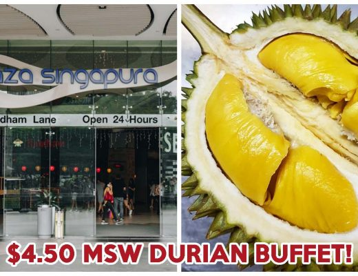plaza singapura durian buffet cover