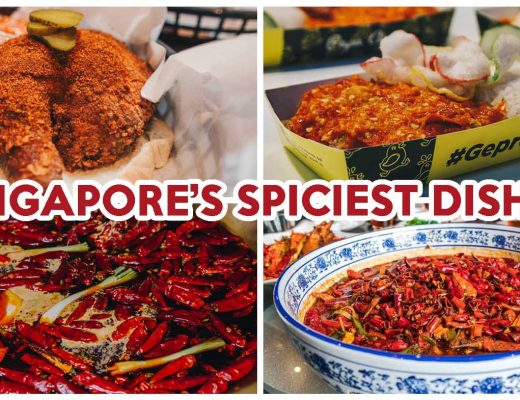 spicy dishes cover