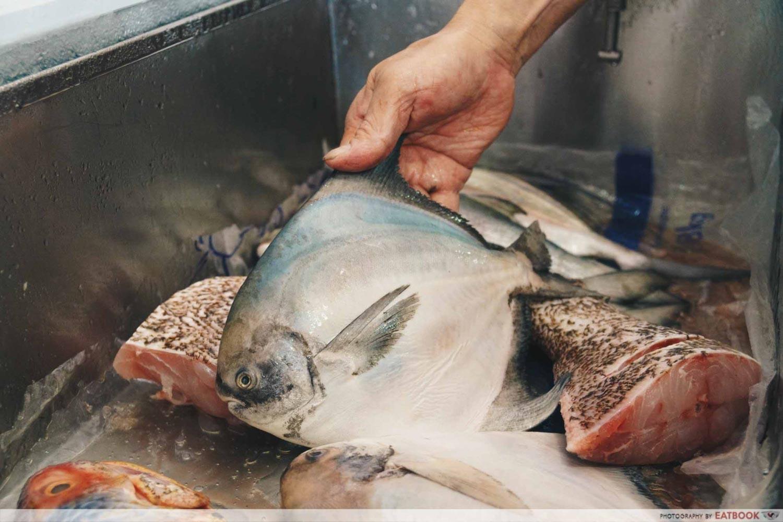 White House Teochew Porridge - Fresh fish