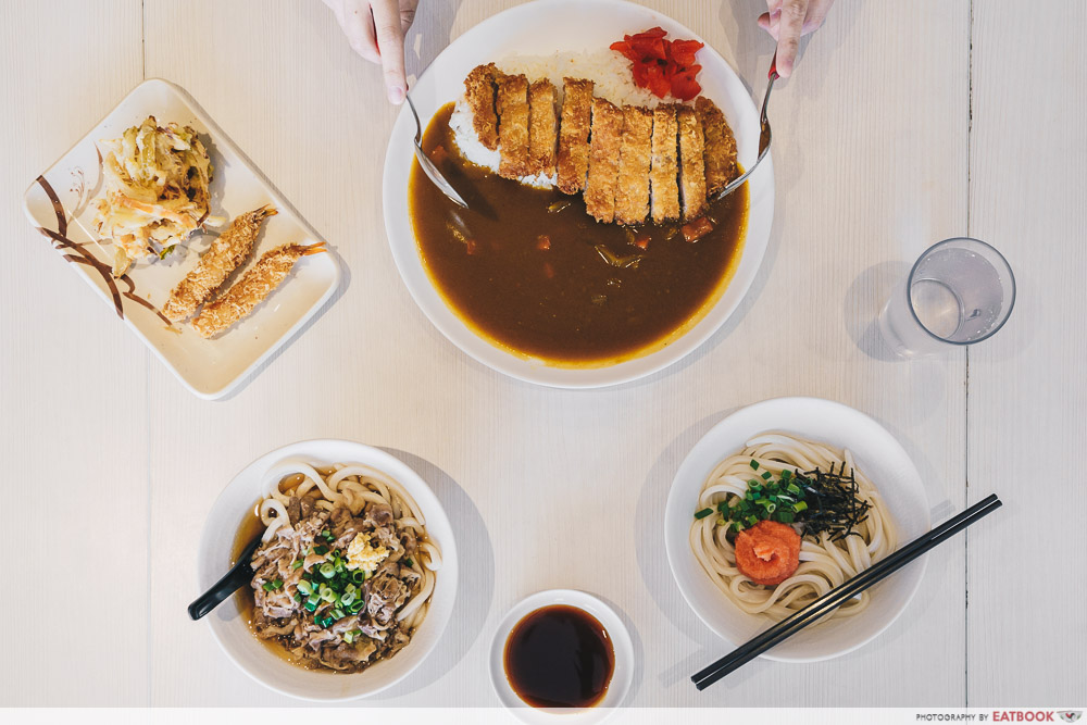 Flatlay of udon and curry chicken rice