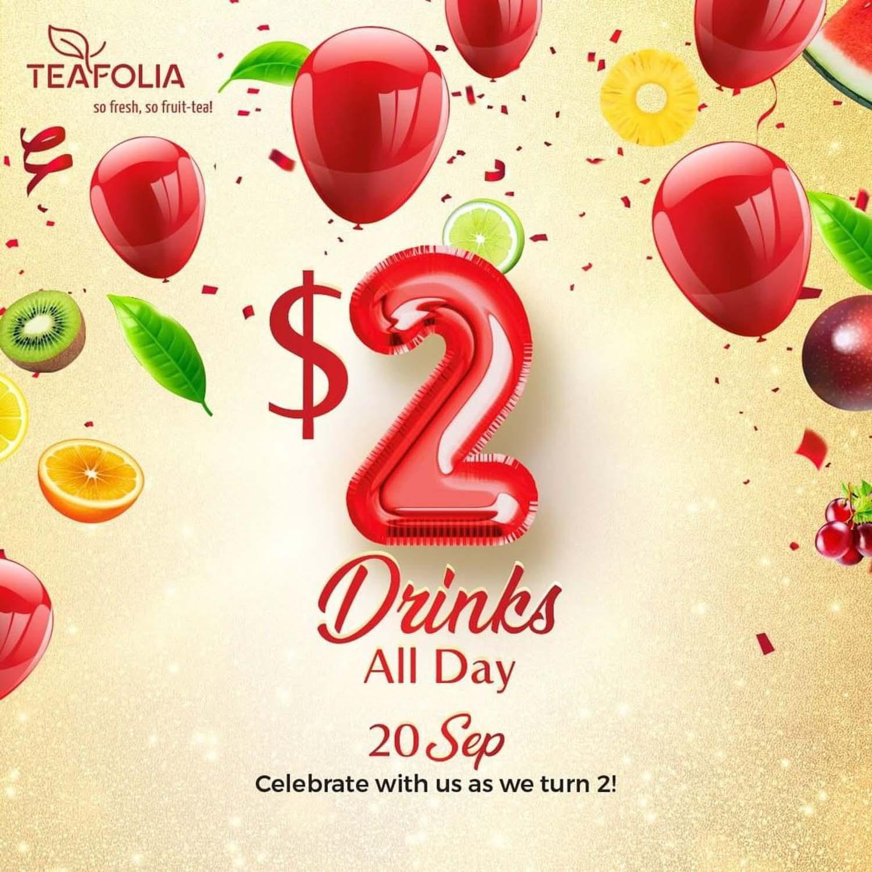 Teafolia - Promotion