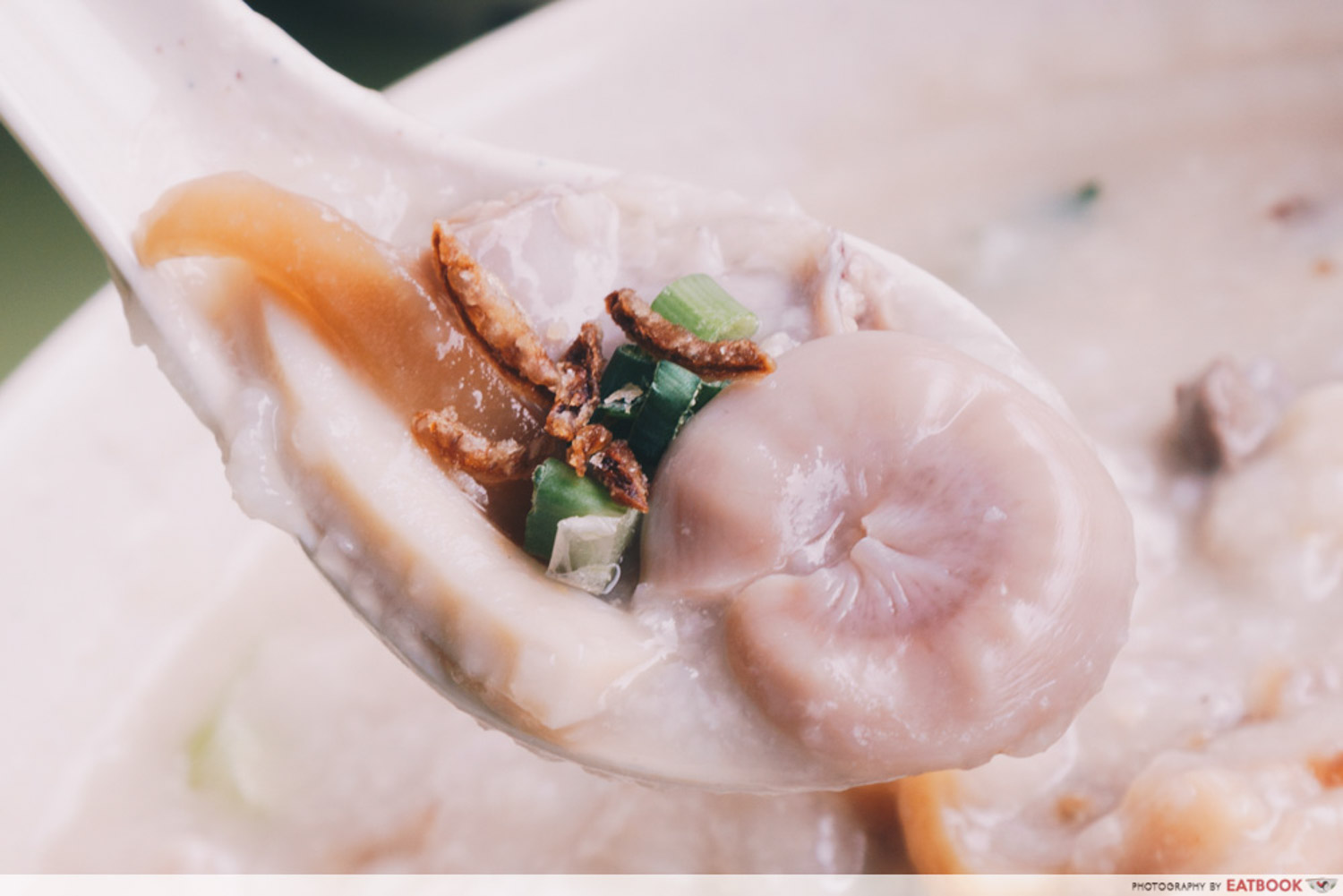 Weng Kiang Kee Porridge - Intestine spoon