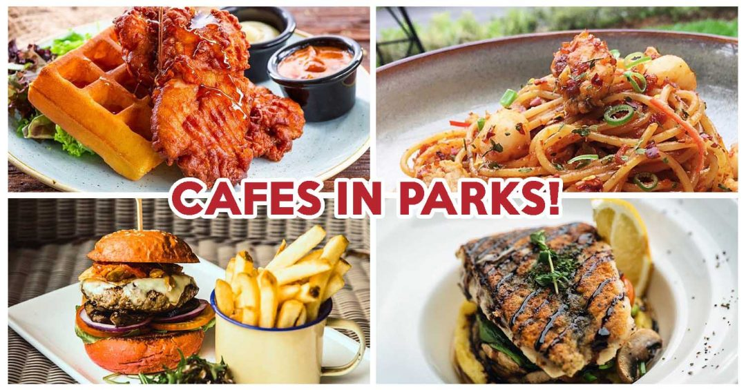 Cafes in parks feature image