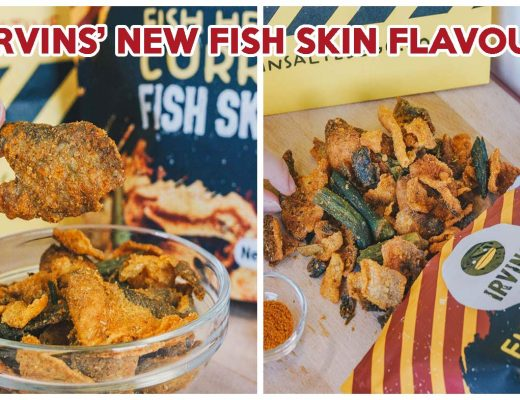 IRVINS Fish Head Curry Fish Skin - Cover