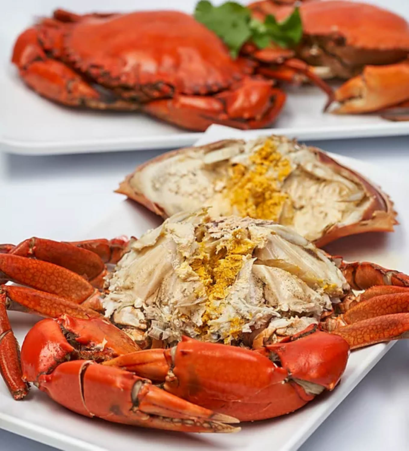 1-for-1 boston lobster - teochew cold crab