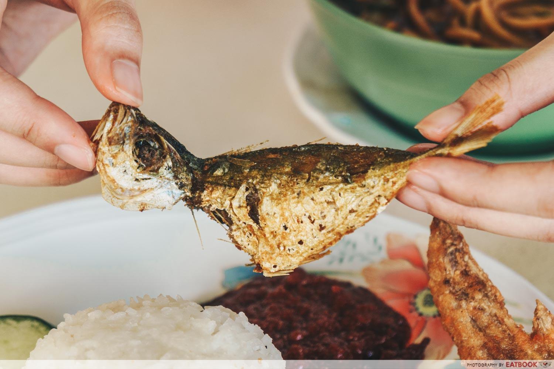 Latiffa Huri - ikan kuning