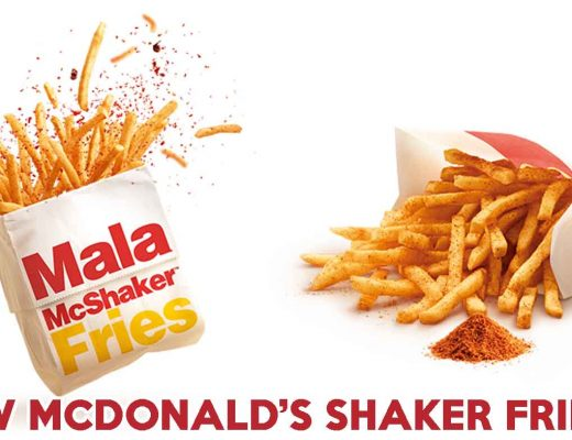 new mcdonalds shaker fries