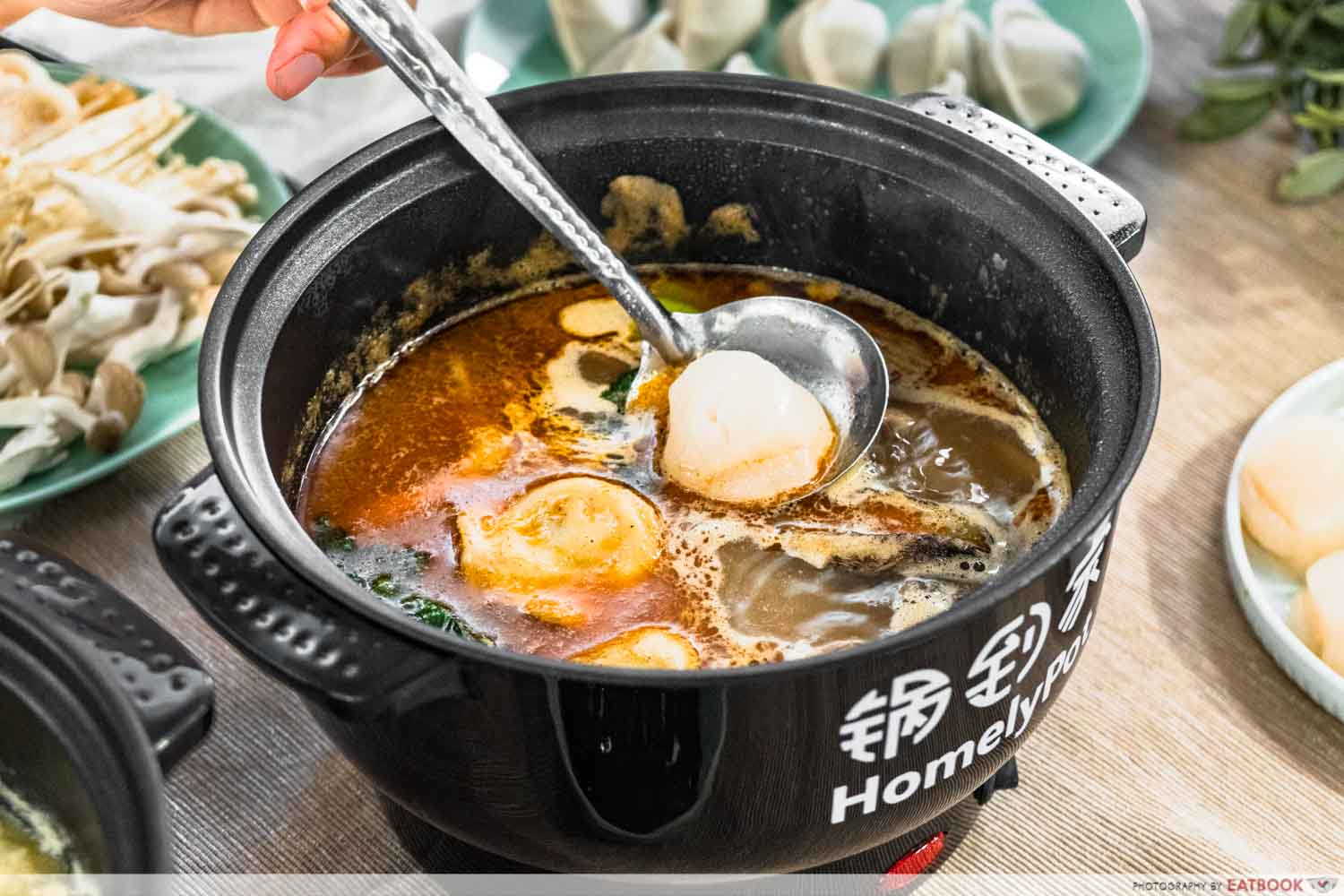 homelypot - scallop