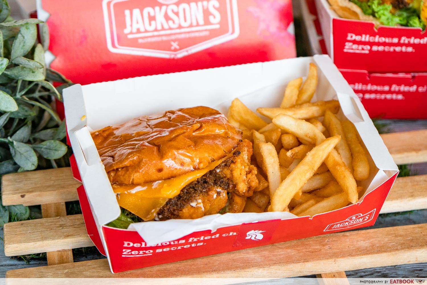 jackson's fried chicken - burger and fries
