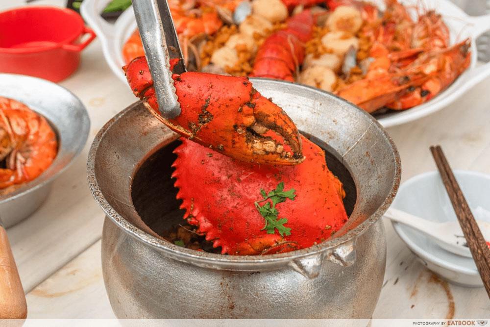 shrimp prawn seafood promo - mud crab dog mother crab